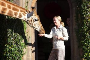 Kim Heflin Feeding Giraffe